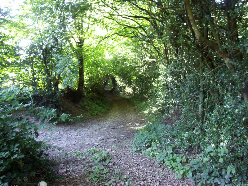 Gtes de France Aveyron : location rservation gtes, chambres d htes